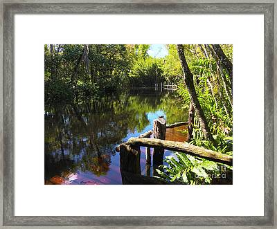 Trapper Nelson Dock Framed Print by Carey Chen