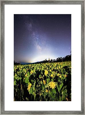 Trapper's Loop Wildflowers Framed Print