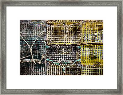 Traps And Knots Framed Print by Colleen Kammerer