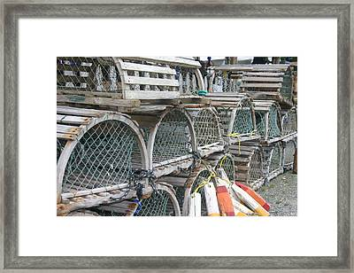 Traps Framed Print by Dennis Curry