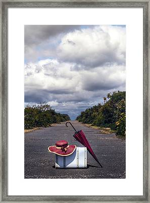 Travel Utensils Framed Print