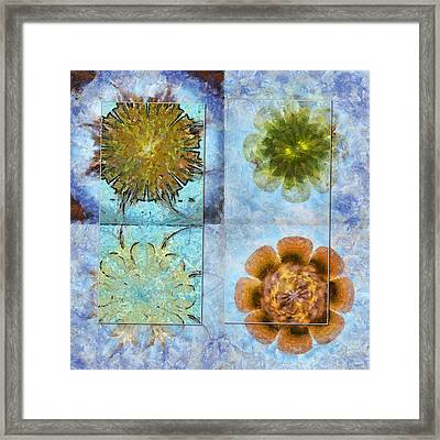 Travelogues Configuration Flower  Id 16165-223109-65251 Framed Print by S Lurk