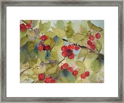 Traverse City Cherries Framed Print by Sandra Strohschein