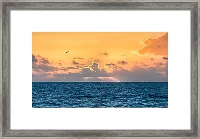 Treasure Coast Imaginations Framed Print