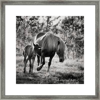 Treasured Moment Framed Print