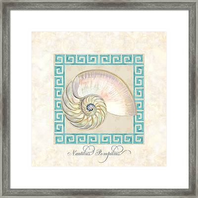 Treasures From The Sea - Nautilus Shell Interior Framed Print by Audrey Jeanne Roberts