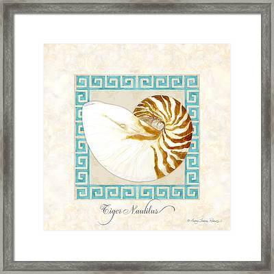 Treasures From The Sea - Tiger Nautilus Shell Framed Print by Audrey Jeanne Roberts