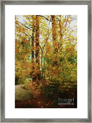 Treasures Of Autumn Framed Print