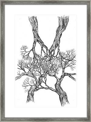 Tree 12 Framed Print