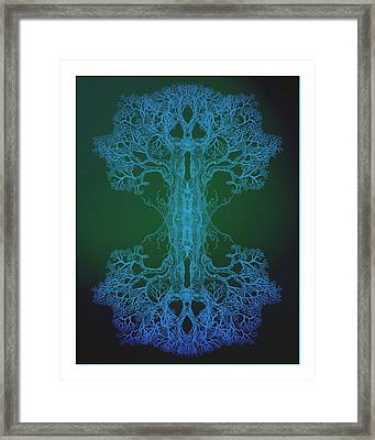 Tree 13 Hybrid 2 Framed Print