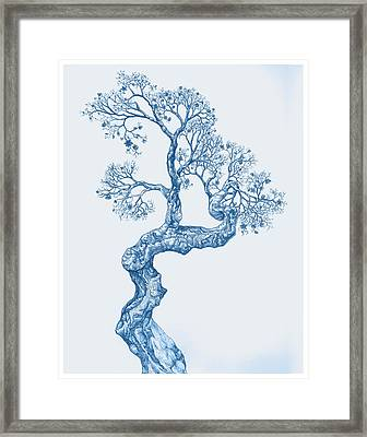 Tree 14 Blue 1 Framed Print