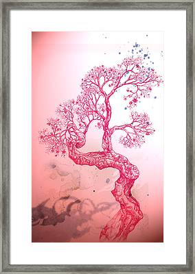 Tree 14 Hybrid 1 Framed Print