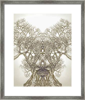 Tree 20 Hybrid 1 Framed Print