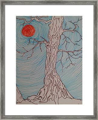 Tree 3 Framed Print by William Douglas