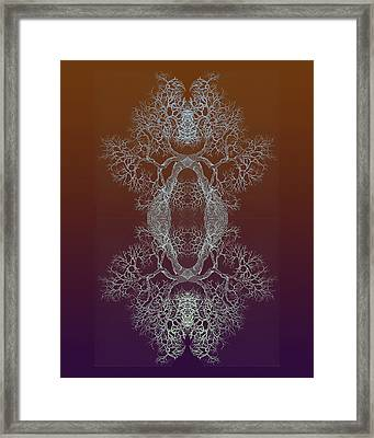 Tree 8 Hybrid 11 Framed Print