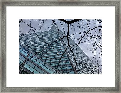 Tree And Citicorp Building Nyc Framed Print by Robert Ullmann