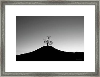 Tree And Hill Bw Framed Print by David Gordon