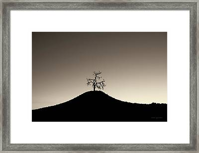 Tree And Hill  Montage Toned Framed Print