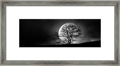 Framed Print featuring the photograph Tree And Moon by Bob Orsillo