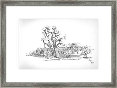 Tree And Some Rocks Framed Print by Padamvir Singh