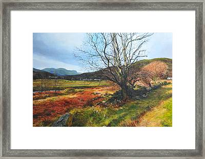 Tree At Aberglaslyn Framed Print by Harry Robertson