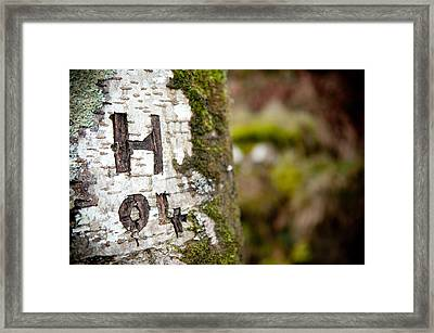 Tree Bark Graffiti - H 04 Framed Print