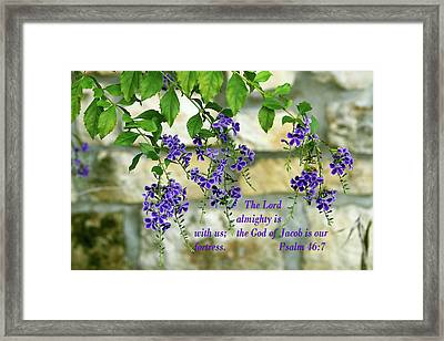 Tree Branches With Purple Flowers Ps.46 V 7 Framed Print by Linda Phelps