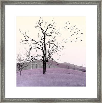Tree Change Framed Print
