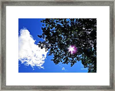 Tree Cloud And Sun Framed Print