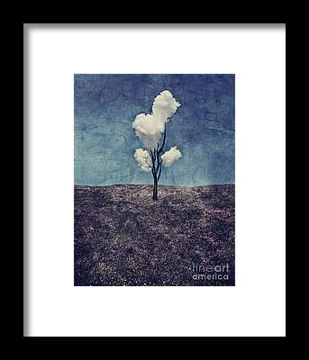 Lonely Tree Framed Prints