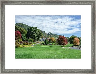 Tree Color Pop Framed Print