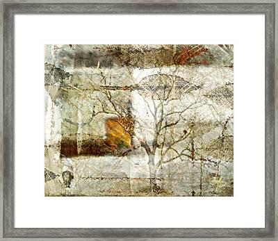 Tree Deconstructed 1 Framed Print by Lynda Payton