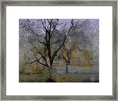 Tree Deconstructed 6 Framed Print by Lynda Payton