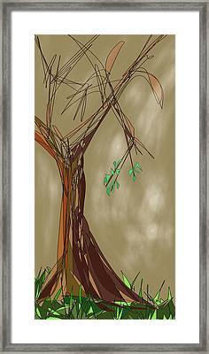 Tree Framed Print by Denny Casto