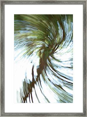 Tree Diptych 1 Framed Print