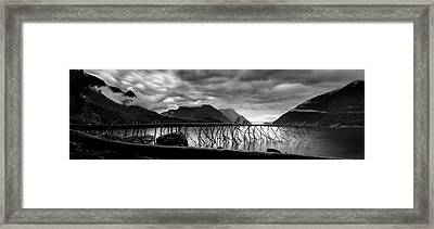 Tree Fall At Alouette Lake Framed Print