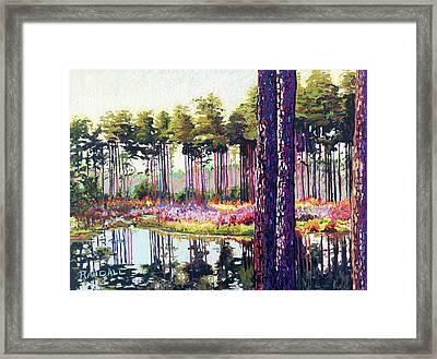 Tree Farm II Framed Print by David Randall