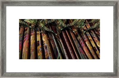 Tree Farm Framed Print by Steve Sperry