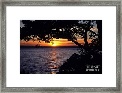 Tree Framing Seascape Sunset Framed Print by Ali ONeal - Printscapes