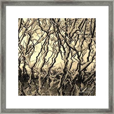 Tree Frenzy Framed Print