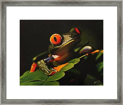 Tree Frog Framed Print by Maciel Cantelmo