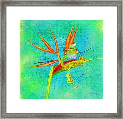 Tree Frog On Birds Of Paradise Square Framed Print