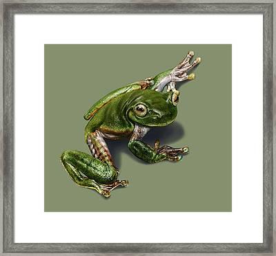 Tree Frog  Framed Print by Owen Bell