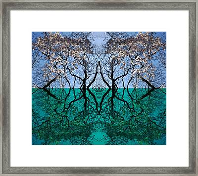 Tree Gate Between Water And Sky Worlds Framed Print