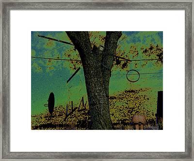 Tree Hangings Framed Print by Lenore Senior