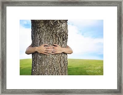 Tree Hugger 2 Framed Print by Brandon Tabiolo - Printscapes