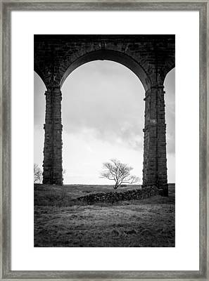 Arched Framed Print by Chris Dale