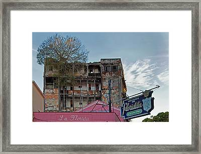 Framed Print featuring the photograph Tree In Building Over La Floridita Havana Cuba by Charles Harden