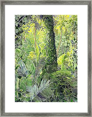 Tree In Garden Framed Print by Fay Biegun - Printscapes