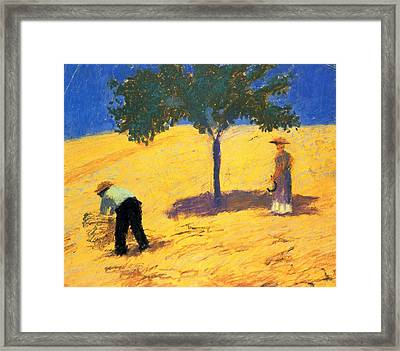Tree In The Cornfield Framed Print